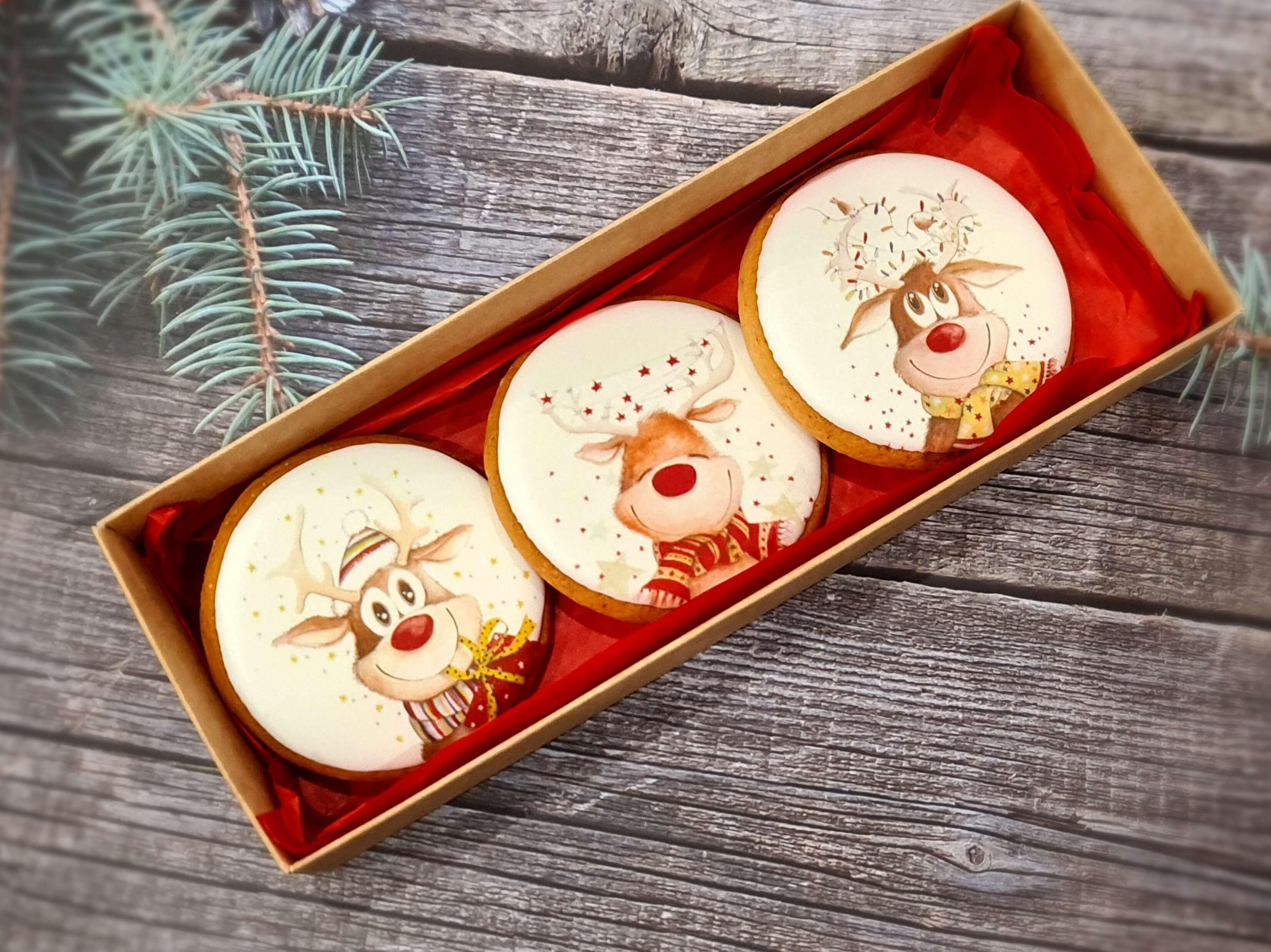 """Dekoruoti imbieriniai sausainiai """"Kalėdos"""" 16"""