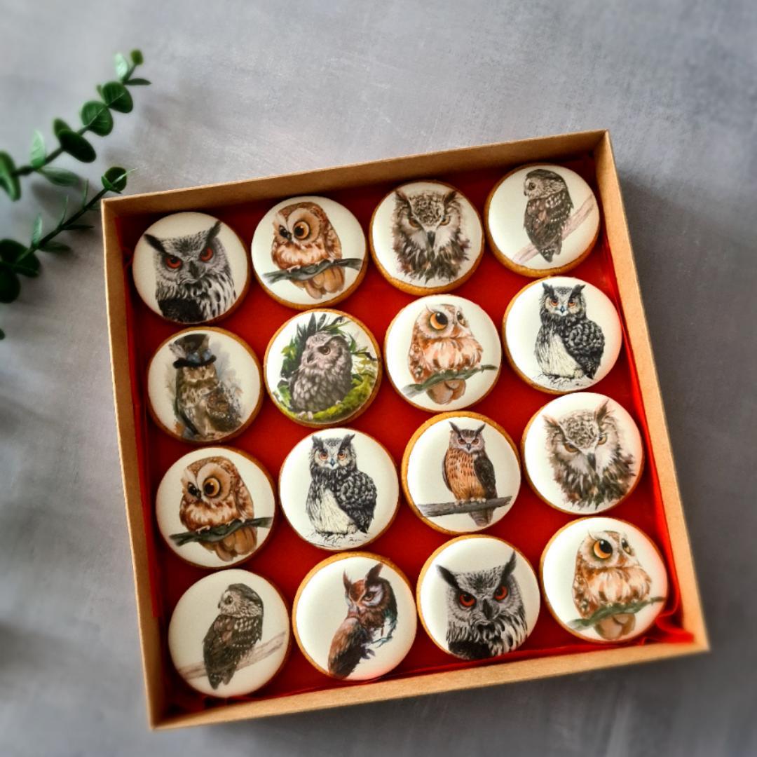 """Dekoruoti imbieriniai sausainiai """"Pelėdos"""""""