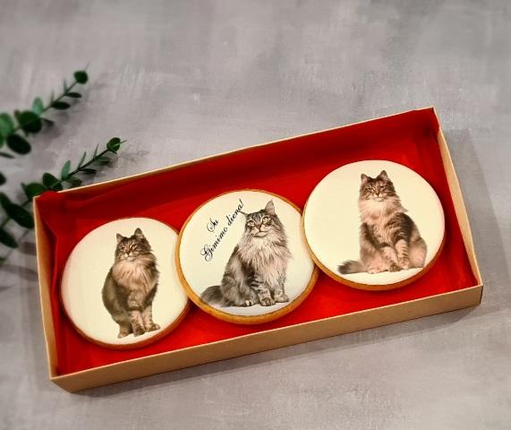 """Dekoruoti imbierinia sausainiai """"Katės"""" pilkos"""